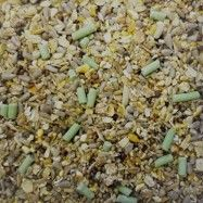 Husk-Free Wild Bird Food With Suet Pellets